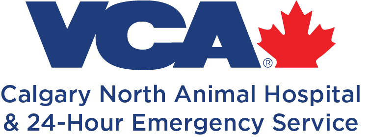 calgary-north-veterinary-hospital
