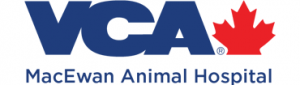macewan animal hospital